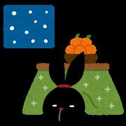 pyoko12_toshinose