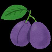 fruit_prune